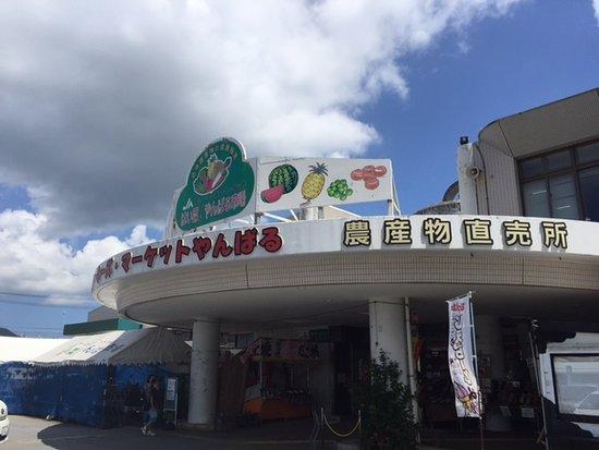 Farmer's Market Haisai! Yanbaru Market