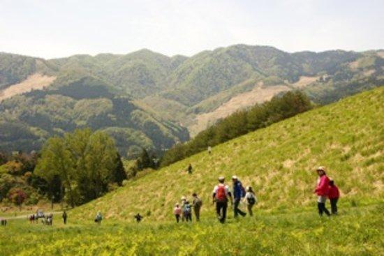 Mt. Kannabe