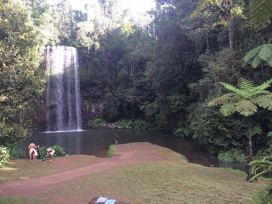 Uncle Brian's Fun, Falls & Forest: Milla Milla Falls