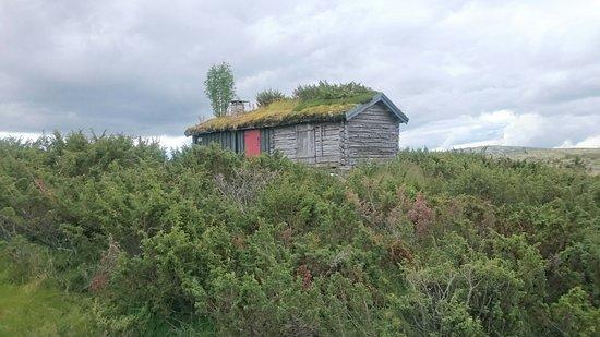 Ringebu, Norge: DSC_0019_large.jpg