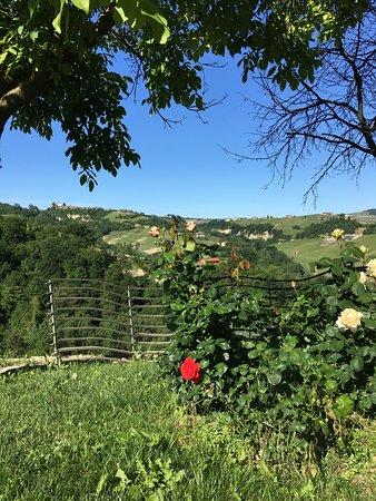 Foto de Serralunga d'Alba