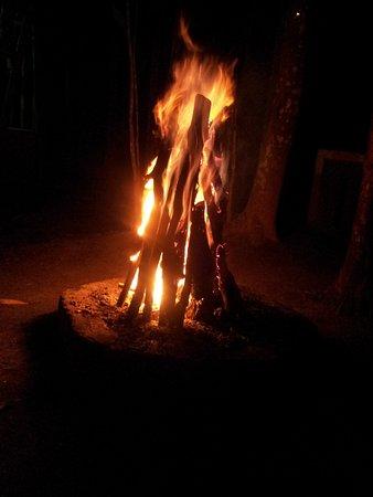 Mudumalai, India: Barbecue