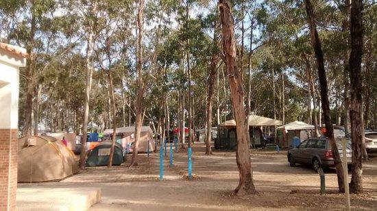 Parque de Campismo do Serrao