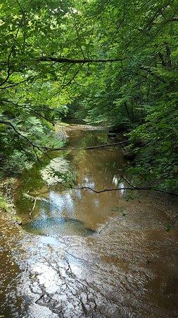 Yellow Springs, Ohio: 20160821_172203_large.jpg