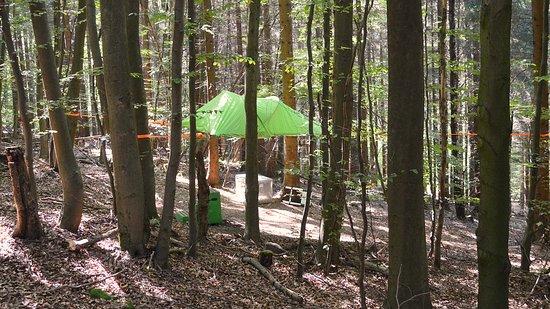 Uslar, Tyskland: Baumzelt Solling