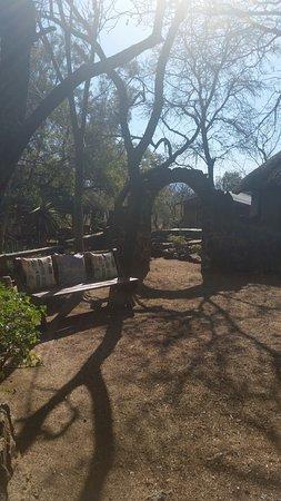 Centurion, جنوب أفريقيا: one of the many walkways among the trees