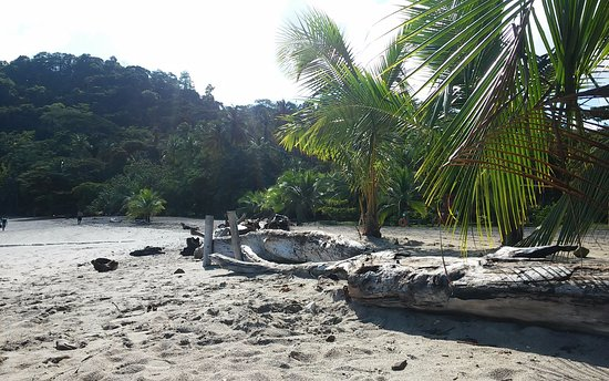 Province of Guanacaste, Κόστα Ρίκα: Playa Mantas