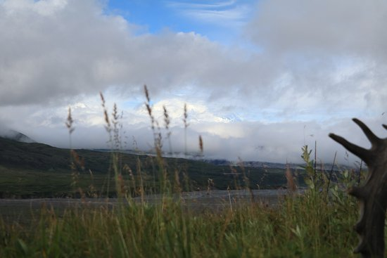 Denali Visitor Center: Denali