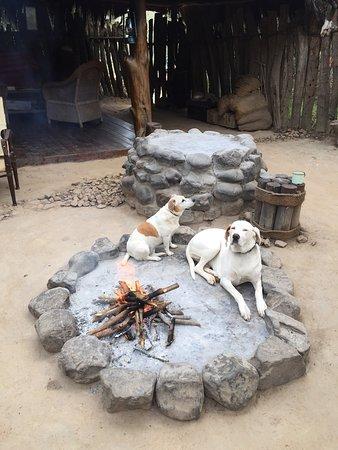 Amakhala Game Reserve, Zuid-Afrika: <3