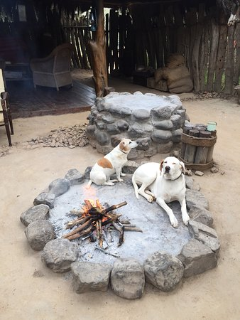Amakhala Game Reserve, Sudáfrica: <3