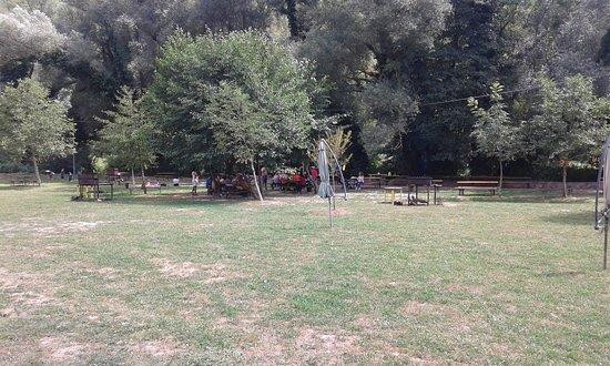Sant'Anatolia di Narco, Italia: L'area verde in riva al fiume