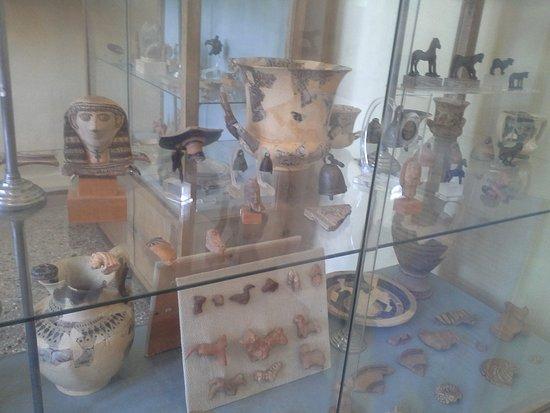 Archaeological Museum of Sparta : Museum Sparta