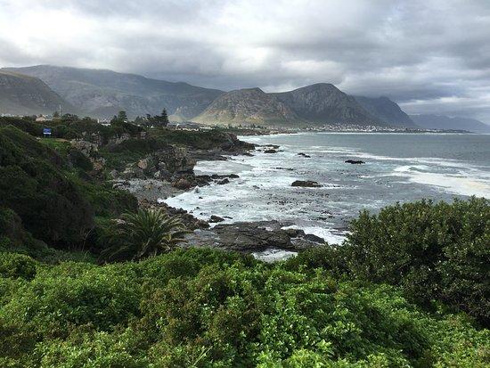 Western Cape, África do Sul: Hermanus