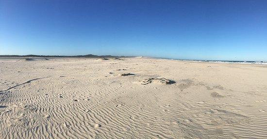 Cabo Occidental, Sudáfrica: De Mond Nature Reserve, near Struisbaai