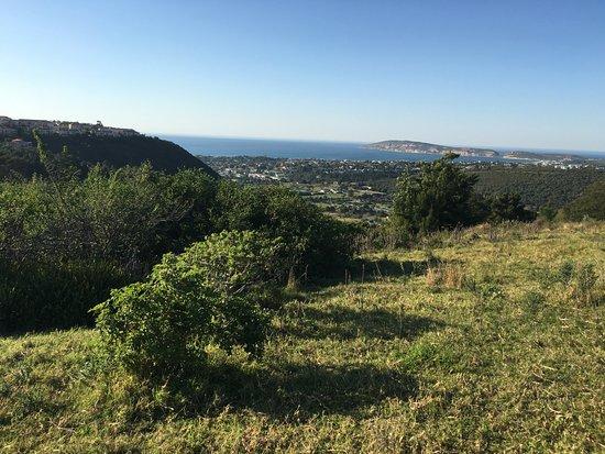 Cabo Occidental, Sudáfrica: Plettenberg Bay