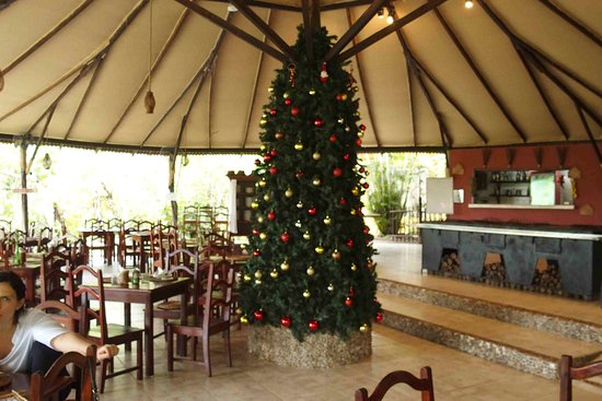 Amazon Ecopark Jungle Lodge: Anche in Amazzonia arriva il Natale