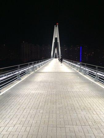 Пешеходный мост Павшинская пойма