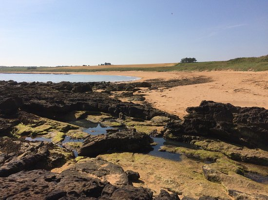 Kingsbarns Beach
