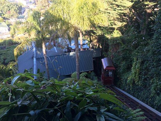 แคปิโตลา, แคลิฟอร์เนีย: photo1.jpg