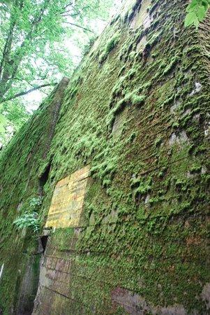 Gierloz, โปแลนด์: Riesige Bunkeranlagen.