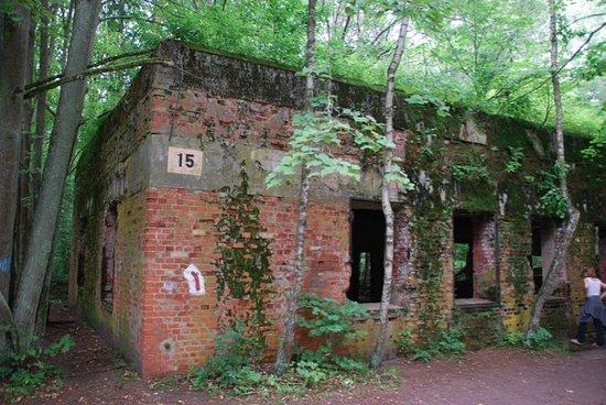 Gierloz, Polen: Nah dran an Gebäude 15.