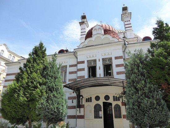 Central Sofia Synagogue (Tsentralna Sofiiska Sinagoga)照片