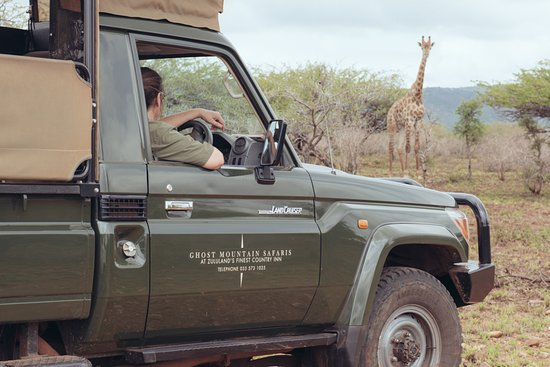 Mkuze, Zuid-Afrika: Game Drive in uMkhuze Game Reserve with Ghost Mountain Safaris