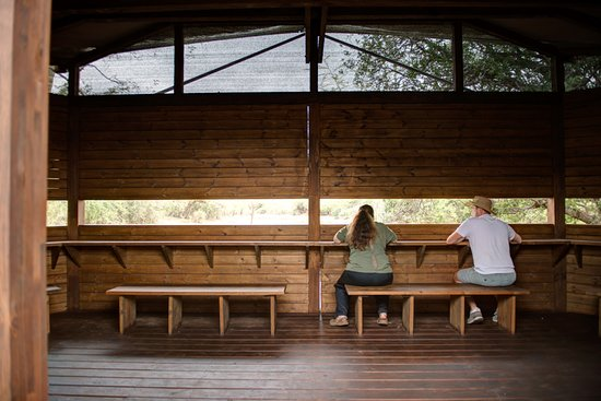 Mkuze, Zuid-Afrika: viewing animals in the hide at  uMkhuze Game Reserve with Ghost Mountain Safaris