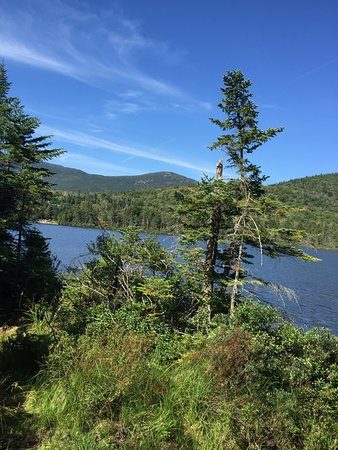 Lonesome Lake : photo3.jpg