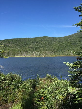 Lonesome Lake : photo4.jpg
