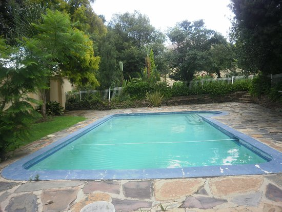 Randburg, Güney Afrika: Pool in Tropical Garden
