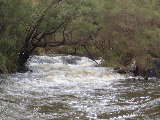 Пембертон, Австралия: Cascade's after rain