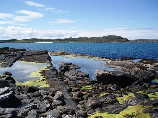 Achiltibuie, UK: The rock pools below the chalets are great for exploring