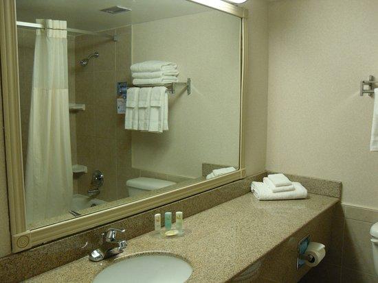 Quality Inn Owen Sound : bathroom