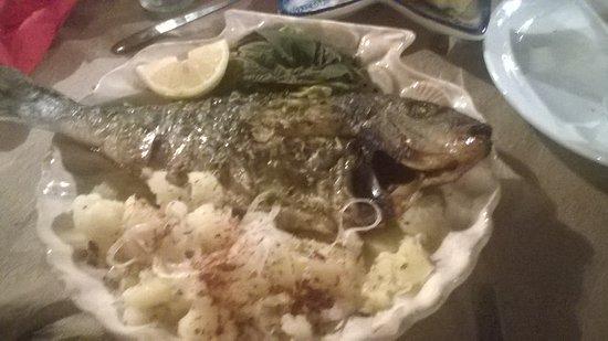 Vavilas Fish Taverna Photo