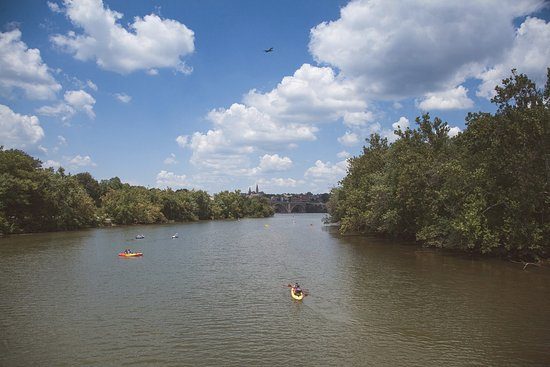 Theodore Roosevelt Island Park: View from the footbridge leading to the island