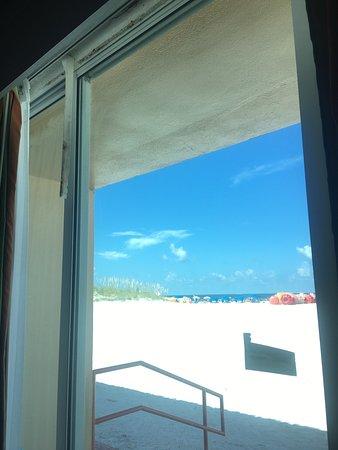 Dolphin Beach Resort: photo1.jpg