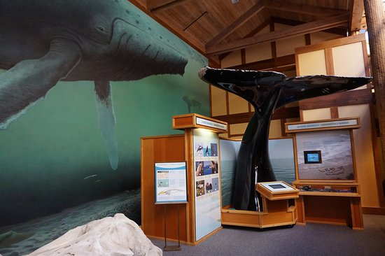Ucluelet, Canadá: Whale mural and display