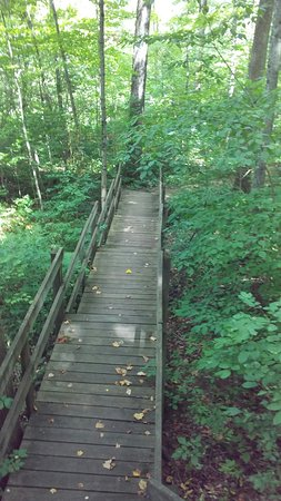 Tiffin, OH: Collier (Howard) State Nature Preserve