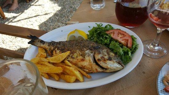 Asterias Restaurant: 20160822_152620_large.jpg