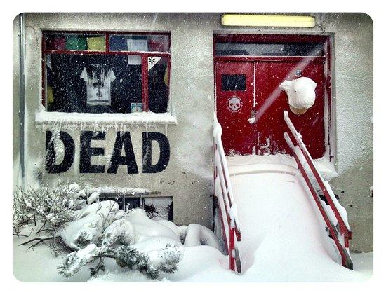 Dead Gallery/Studio
