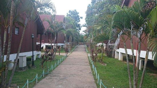 Kuala Tahan, ماليزيا: DSC_1065_large.jpg