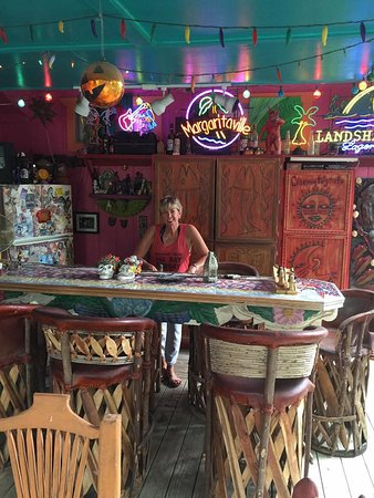 Lost Parrot Cabins: The bar area by the pool