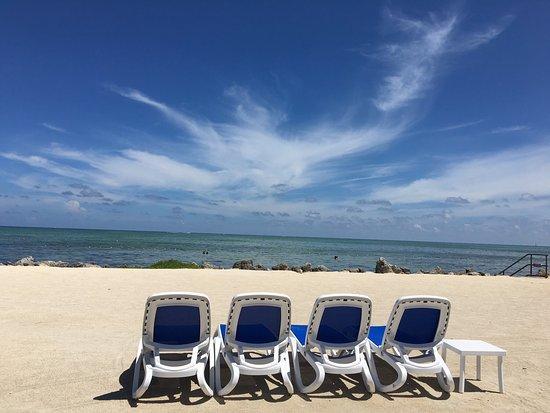 Islander Resort, a Guy Harvey Outpost: photo2.jpg