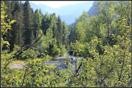 Livingston, MT: Mission Creek