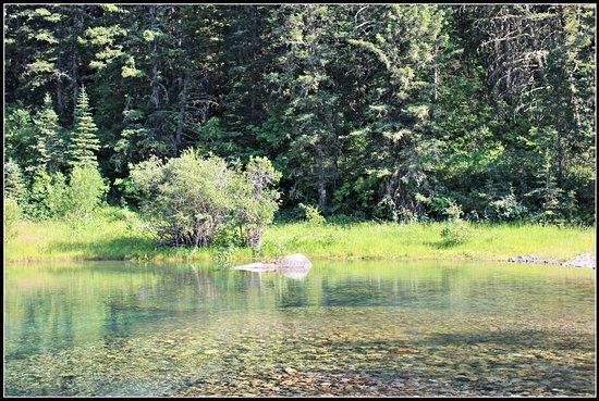 Livingston, Μοντάνα: The pond