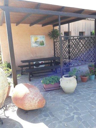 Le Terre di San Domenico: 20160821_103907_large.jpg