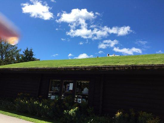 Al Johnson's Swedish Restaurant & Butik: view 1