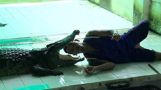 Crocodile & Snake Show Koh Chang: photo1.jpg