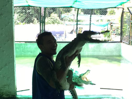 Crocodile & Snake Show Koh Chang: photo2.jpg
